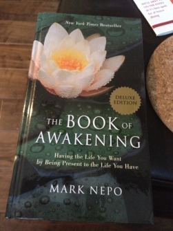 book_of_awakening